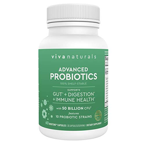 Probiotics 50 Billion CFU - Shelf Stable Probiotic Supplement Featuring Zinc Oxide & Acidophilus Probiotic, Probiotics for Men & Women to Support Digestive & Immune Health, 60 Acid-Resistant Capsules