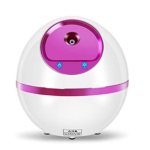 Freal Hot Facial Steamer Pulverizador Face Steamer para Humidificador de la piel Máquina Máquina CUIDADO CUIDADO CUIDADO Hidratante Spray Facial Facial Spa Instrumento (Color : ROSE)