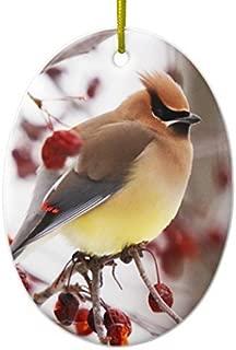 Valentine Herty Christmas Ornament Cedar Waxwing 2 Ornament Oval Ornament