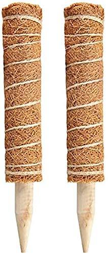 Auzof Barra de Musgo de Coco,Soporte de Planta de extensión de Fibra de Coco,Palo de Musgo Extensible de Fibra de Coco para extensión de Soporte de Plantas, Plantas trepadoras de Interior