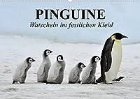 Pinguine - Watscheln im festlichen Kleid (Wandkalender 2022 DIN A2 quer): Koenigspinguine in ihrem natuerlichen Lebensraum (Monatskalender, 14 Seiten )