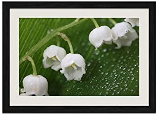 Fresh Lily of the Valley - Art Print Wall Black Wood Grain Framed Picture(16x12inch)