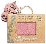 Couleur Caramel Fard A Joues Blush Powder Nº 53