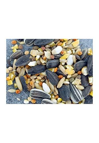Gardif - Mélange graines supérieur 1.8 kg