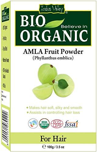 Indus Valley Bio Organic Amla Polvo Pure Natural Pure 100g