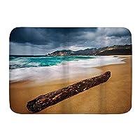 NINEHASA バスマット お風呂マット 嵐の天気とビーチの流木海景古い木の部分 バスマット 浴室 吸水 速乾 お風呂マット