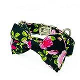 Hendrix & Co Dog collar (Liberty Floral, Small)