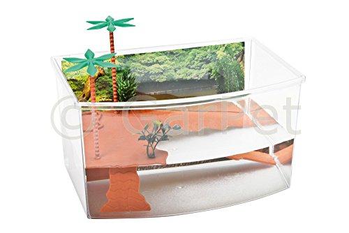 GarPet Schildkröten Terrarium Insel Aquarium Becken Heim Wasserschildkröten Kunststoff