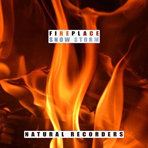 Natural Recorders