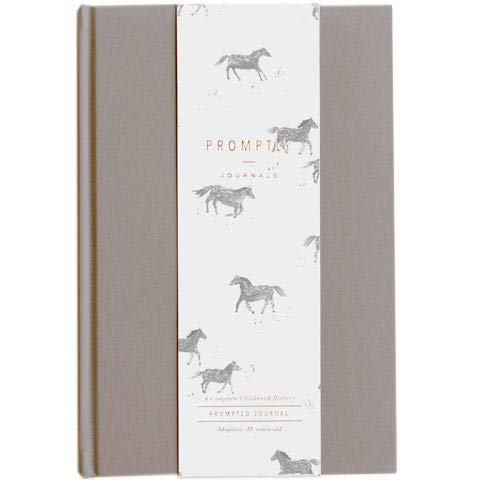 Promptly Journals - Adoption Childhood History Journal (Grey),...