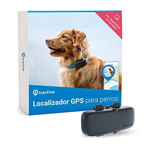 Tractive Localizador GPS para perros, rango ilimitado, seguimiento de actividad, resistente al agua (Último Modelo)