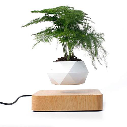 spier Kreative schwebende Luft Bonsai Topf Rotation Blumentopf Pflanzer Home Office Schreibtischdekoration (Ohne Pflanzen)