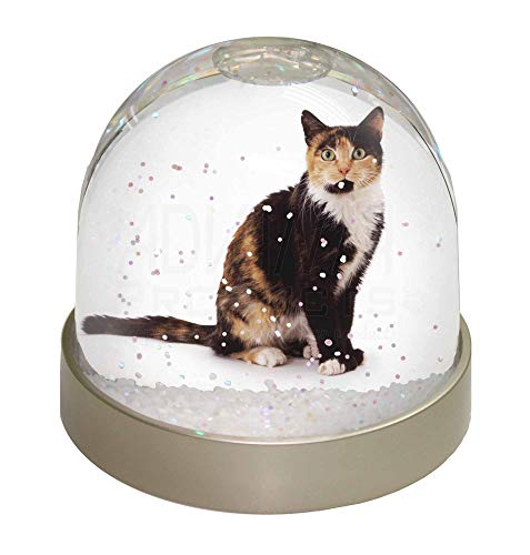 Advanta Schildpatt Katze Schneekugel Snow Dome Geschenk, Mehrfarbig, 9,2x 9,2x 8cm