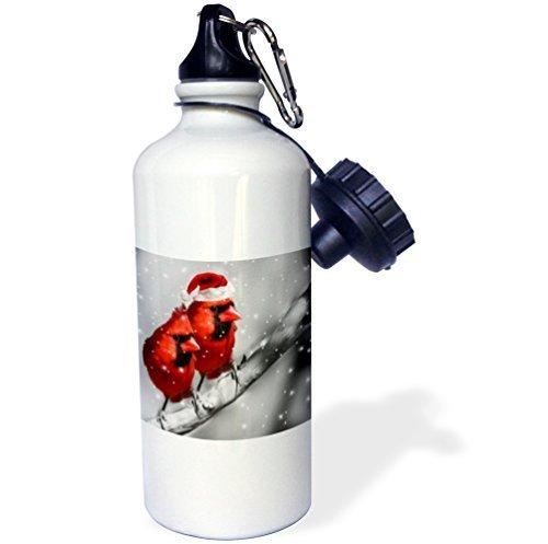 Cukudy sport waterfles geschenk, kerst collectie rode kardinaal vogels in Santa hoed winter zwart en wit scene wit roestvrij staal waterfles voor vrouwen mannen 21 oz