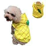 SEIS Halloween Dog Pineapple Costume Pet Coat Jacket Yellow Autumn Winter Apparel Cat Hoodies Puupy Clothes French Bulldog Chihuahua (M (Chest 52cm/20.5in))