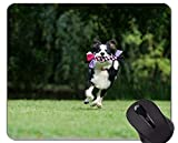 Yanteng Alfombrilla de ratón Impresa con Narciso Pastor Australiano, Border Collie Alfombrilla de ratón con Borde Cosido
