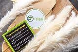 felani® Pampasgras getrocknet - 15 Stück in weiß I natürlich & besonders fluffig - echte Trockenblumen Wedel - Wohnzimmer Deko - Phragmites Communis - 7