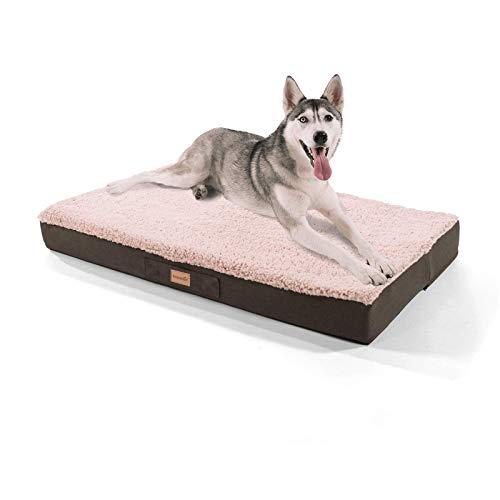 brunolie Balu sehr großes Hundebett in Beige, waschbar, orthopädisch und rutschfest, kuscheliges Hundekissen mit atmungsaktivem Memory-Schaum, Größe XL (120 x 72 x 10 cm)