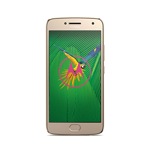 Motorola Moto G5 Plus Smartphone (13,2 cm (5,2 Zoll), 32 GB, Android) Fine Gold