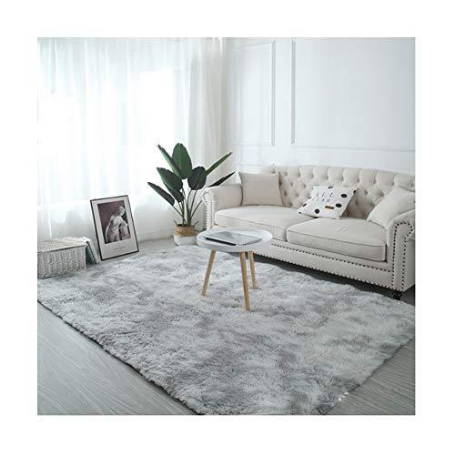 AOACD Fluffy gebied tapijten anti-slip voor woonkamer en slaapkamer grote vloer tapijt grijs