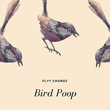 Bird Poop