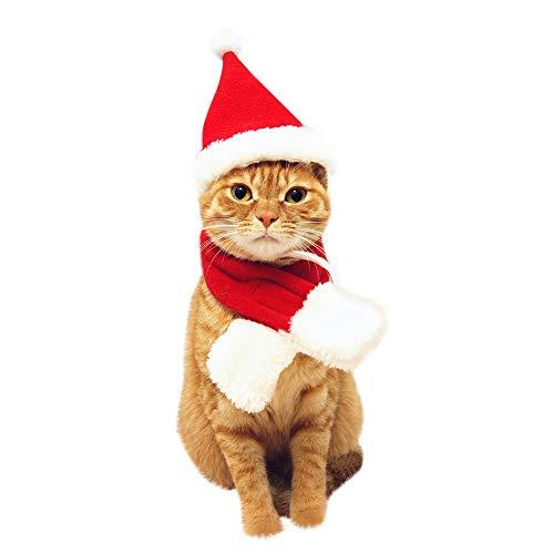Amphia - Haustier-Weihnachtsschellfisch-Hut-Satz,Haustier-Katzen-Hundehut-roter Schal-Weihnachtsfeiertags-Kostüm-Kleintier-Kleidung eingestellt(Rot,L)