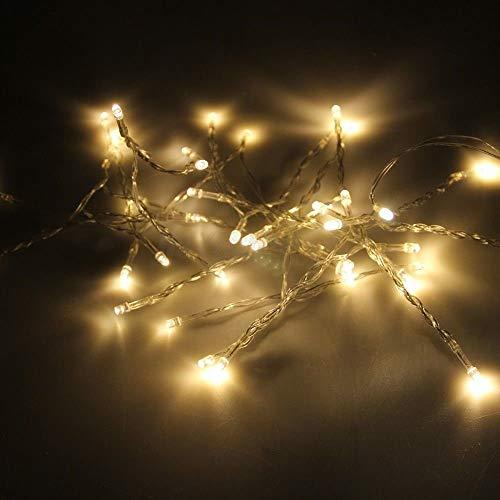 Happium - Cadena de luces LED de 40 luces LED de color blanco cálido de 4 m