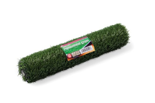 Prevue Hendryx 501G Pet Products Replacement Tinkle Turf, Medium,Green