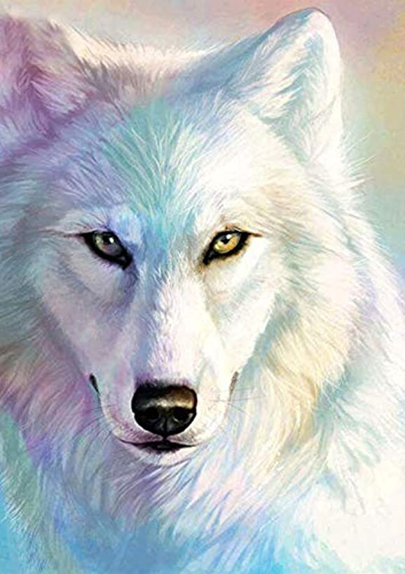 5D Full Drill Diamond Painting Kit, DIY Diamond Rhinestone Painting Kits for Adults and Children Embroidery Arts Craft Home Decor 12 by 16 inch (White Wolf)