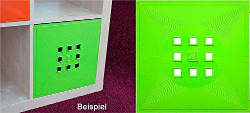DEKAFORM Tür für Würfelregal Flexi Einsatz IKEA Regal Expedit+Kallax mit Nörnäs, XXXL * Hellgrün