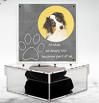 Best pet keepsake box Reviews