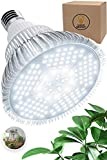 100W LED Grow Light Bulb - White Full Spectrum Plant Light for Indoor Plants, Garden, Aquarium, Vegetables, Greenhouse & Hydroponic Growing by Haus Bright