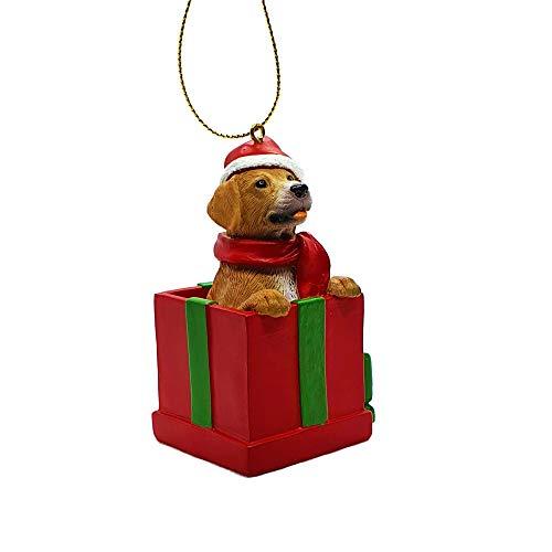 Golden Labrador Retriever Dog in Christmas Box for Holiday Christmas Tree Ornament as Hanging Xmas Decoration