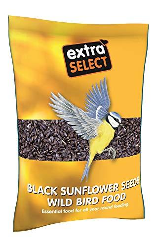 Extra Select Black Sunflower Seed Wild Bird Food, 2 kg