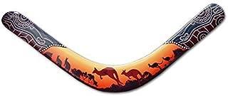 Kangaroo Pelican Boomerang - Authentic Australian Boomerangs with Aboriginal Design.