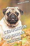 L'EDUCATION DU CARLIN: Toutes les astuces pour un Carlin bien éduqué