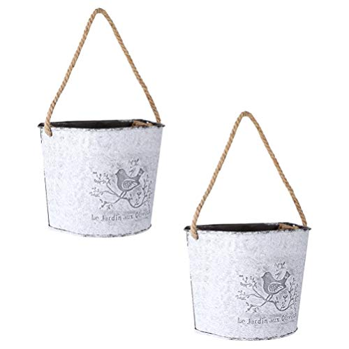 BESTonZON Vasi pensili Pentole di Impianti Appesi 2Pcs, Contenitore di Pianta del Vaso di Pianta del Vaso di Latta da Parete del Vaso Succulente