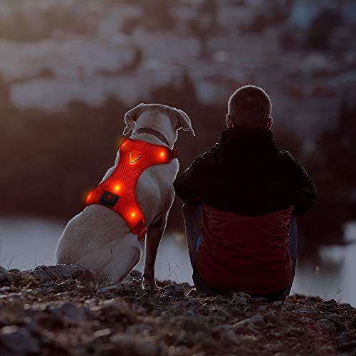 Domi LED Dog Harness, USB Rechargeable Glowing Pet Harness, Comfortable Mesh Light Up Dog Vest Safety Pet Apparel for Your Medium Dogs(M,Red)