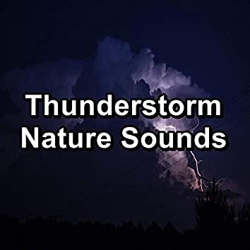 Thunderstorm Nature Sounds