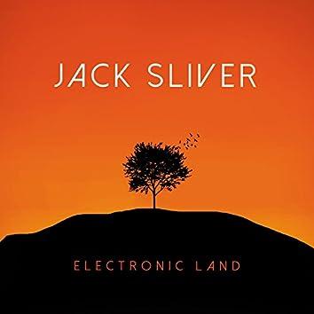 Electronic Land