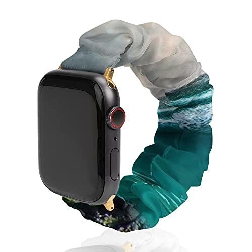 Compatible with Apple Watch Bands Sharks Whales Corals Ocean Women Elastic Watch Bands Compatible for iWatch Series 6 5 4 3 2 1