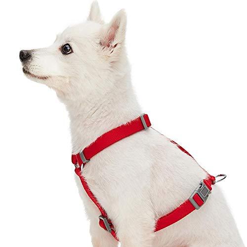 UMI. Essential - Arnés clásico Ajustable para Perros, Talla L, Rojo