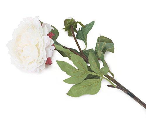 Floral Elegance F074WL - Pivoine artificielle blanche de 80 cm