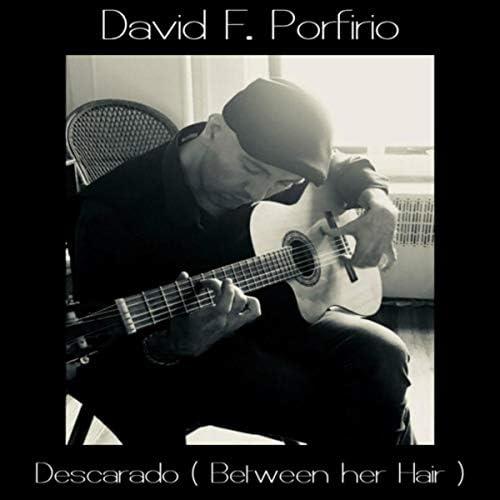 David F. Porfirio