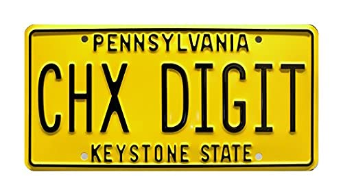 Axige888 The Goldbergs | CHX Digit | Metal Stamped License Plate