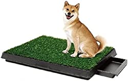 Pee Wee Dog Park Indoor Dog Toilet Deluxe