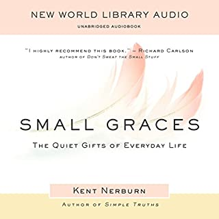 Small Graces audiobook cover art