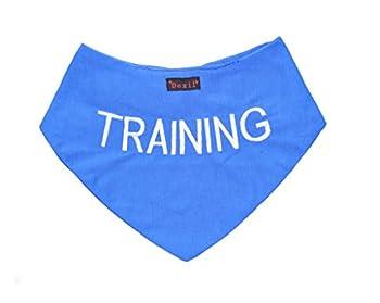 Formation Bandana bleu pour chien personnalisé qualité Message brodé. Accessoire de mode écharpe cou. Prévient les accidents par Avertissement Autres de Votre chien en Advance