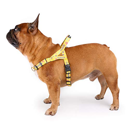 iChoue Dog Harness Easy On and Off Front Back 2 Leash Attachments Adjustable Lightweight Harness for Small and Medium Dogs - M Multi Color