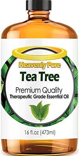 Top 10 Best tea tree essential oil 16 oz Reviews